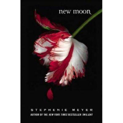 Review novel the twilight saga new moon